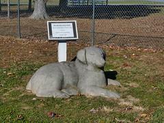 Turkey Hill Dog Park Nov 24, 2017 at 1-56 PM
