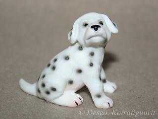 Dalmatian, pentu_wm