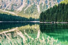 La sponda del lago