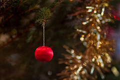 Tiny Bauble On A Christmas Tree