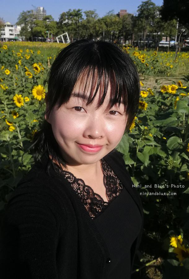 台中向日葵花海國資圖14