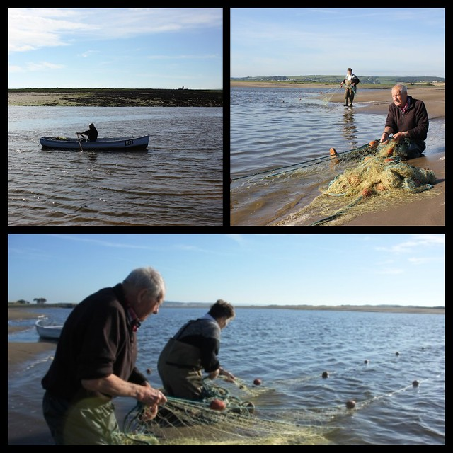 Salmon Netting on the Taw and Torridge