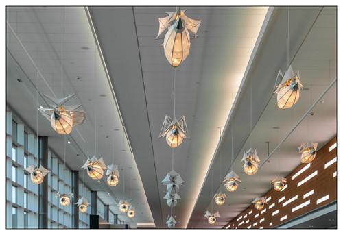 airport minneapolis minnesota msp terminal2 humphreyterminal lightfixtures