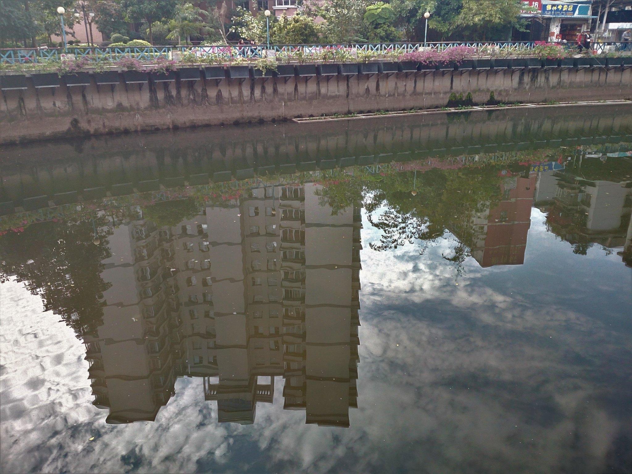 IMG_20171226_142338 (Upon reflection)