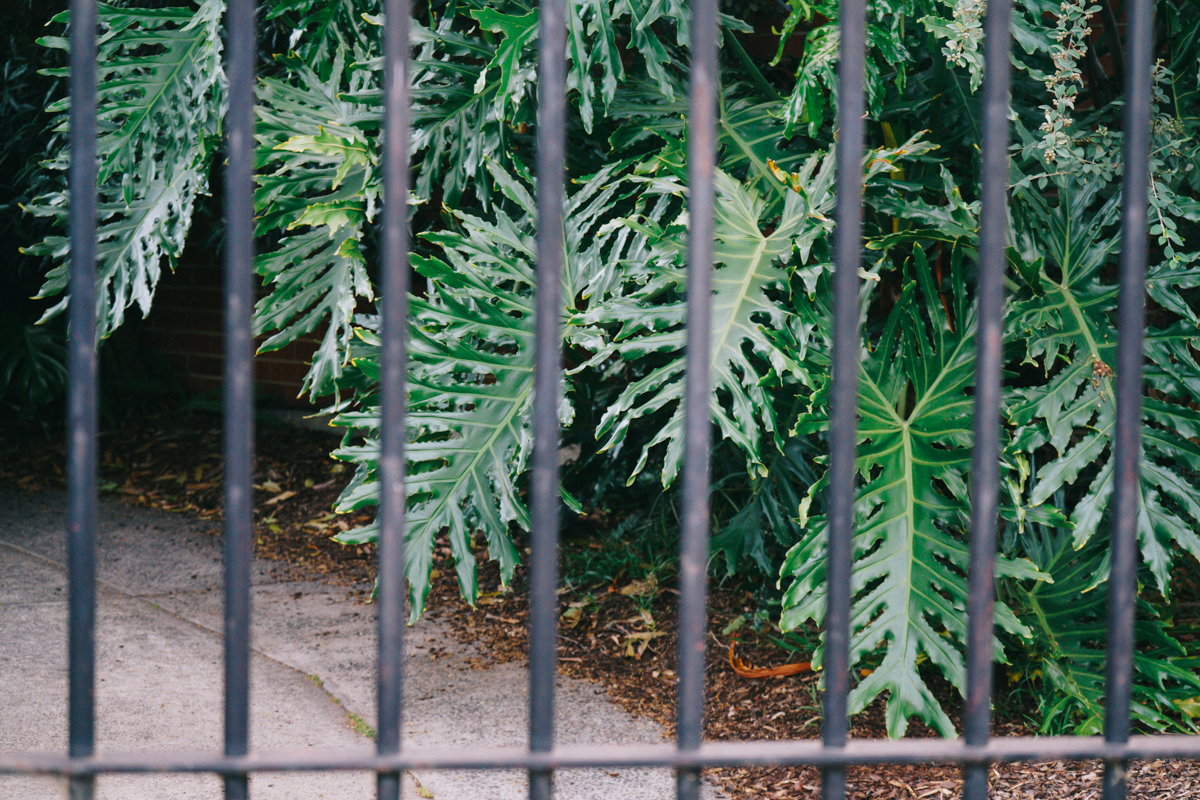 Melbourne Green