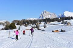 3 nejlepší běžkařská střediska v Itálii pro rodiny i na trénink