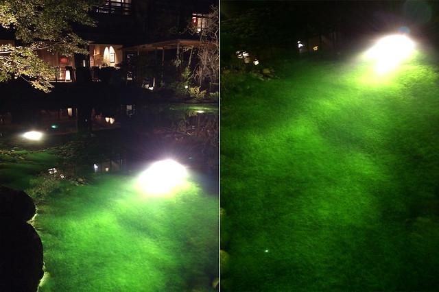 幻想的なアオミドロの池 伊豆の温泉宿 玉峰館