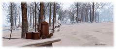 Snefnug - Dec 2017