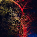 Dunham Christmas lights 07 dec 17