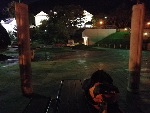 元町公園で寝ることに すると……