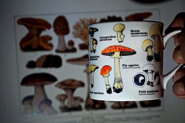 Mycology Mug.
