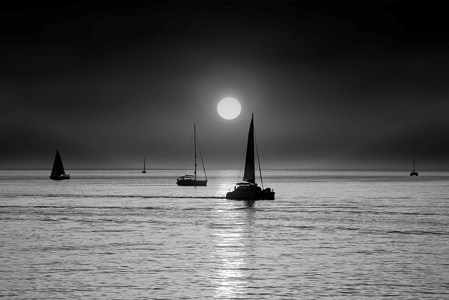 Sailing at sunset - Tel-Aviv beach - B&W