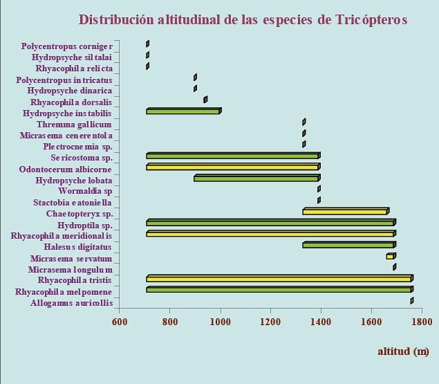 Gráfico con distribución de tricópteros en el Parque Nacional de Ordesa y Monte Perdido