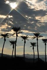 Coachella CA 10-02-11 4392
