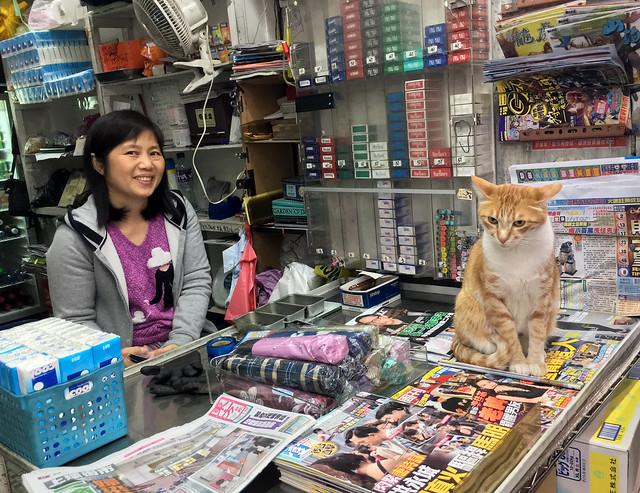 Kwik-E-Mart Cat Lady