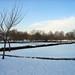 Gadebridge Park, Hemel Hempstead 2009