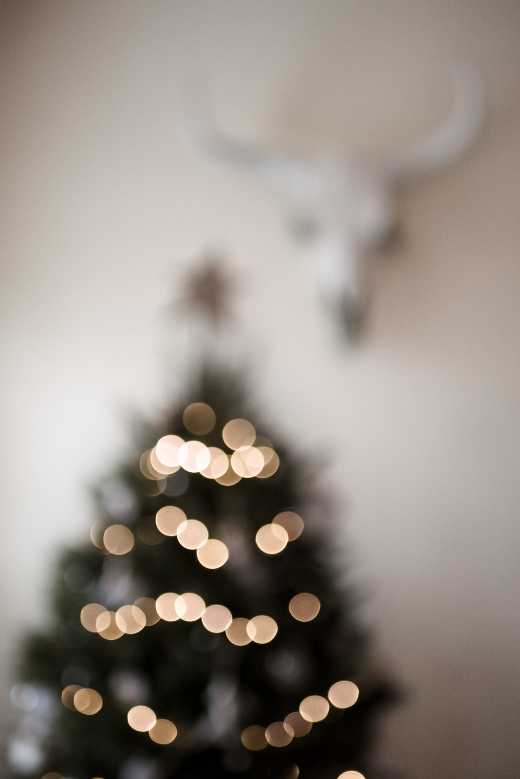 Boho Christmas on juliettelaura.blogspot.com