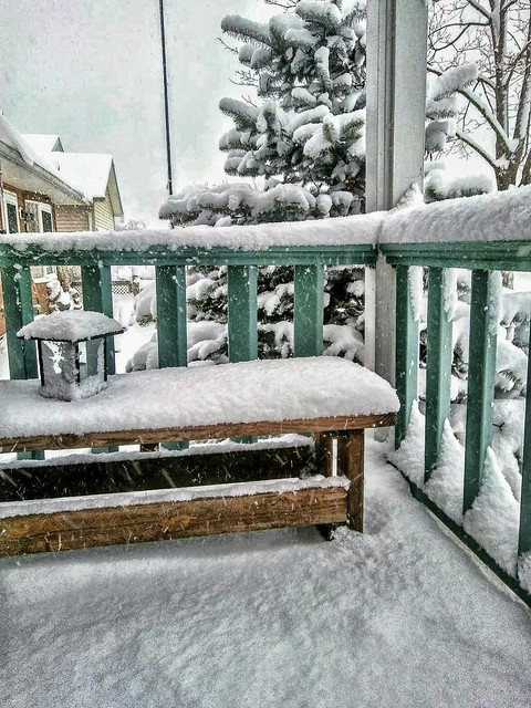 Winter Porch View