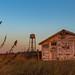 Dilapidated Beach House