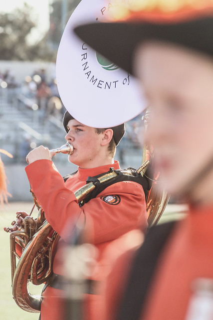 Equestfest-BandFest20171229SydneyCattouse-139.jpg, Canon EOS 70D, Canon EF 200mm f/2.8L II