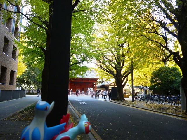 Photo:Multiple subjects at Akamon gate, the University of Tokyo By Kasadera