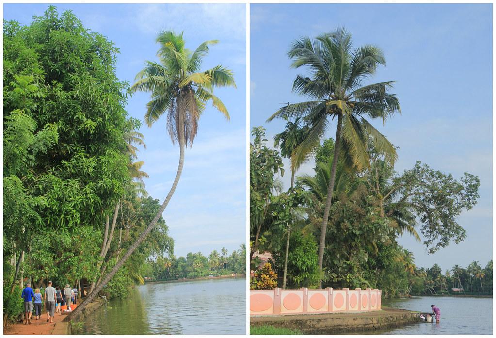 Chennamkary, Kerala