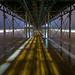 Golden Pathway...