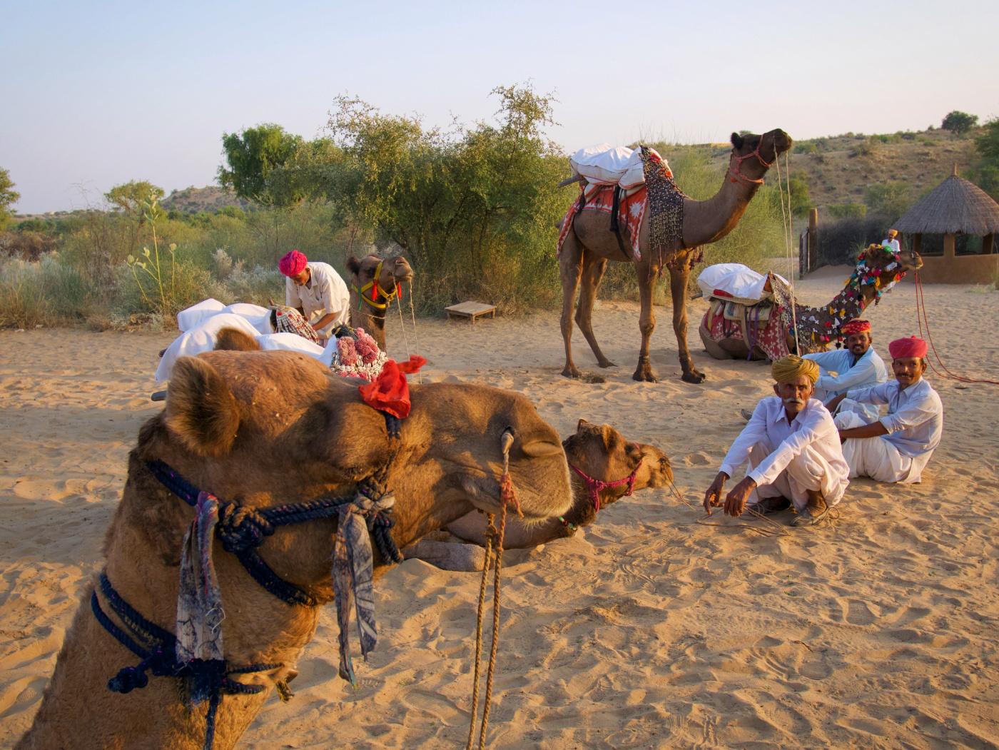 487-India-TharDesert