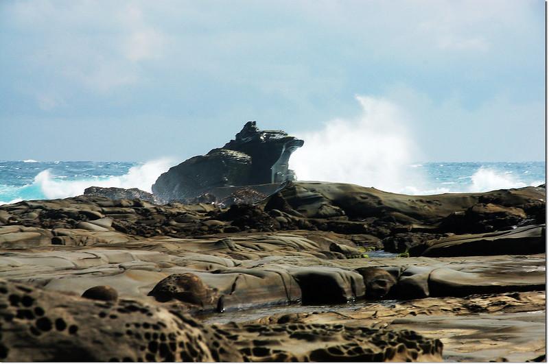 海蝕平台青蛙石 4
