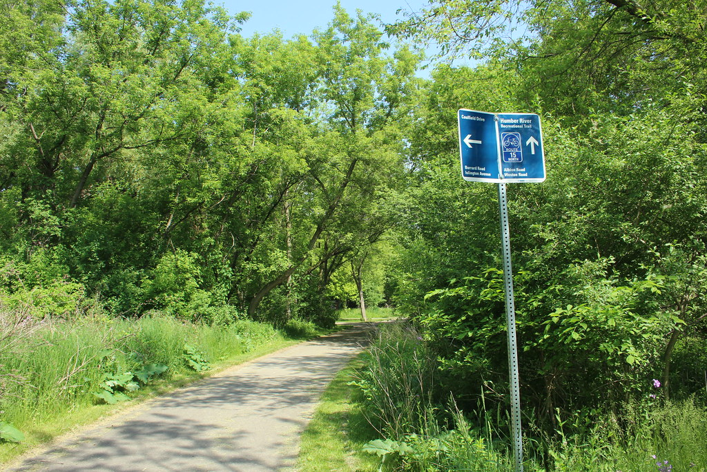 Throwback 2016: Humber River Bike Path