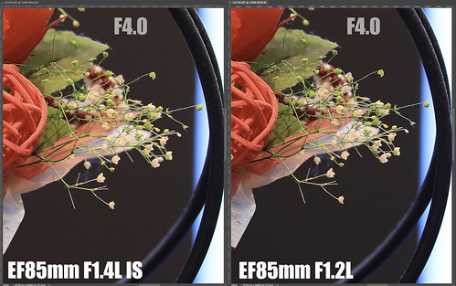 EF85mm F1.4L IS vs EF85mm F1.2L_15