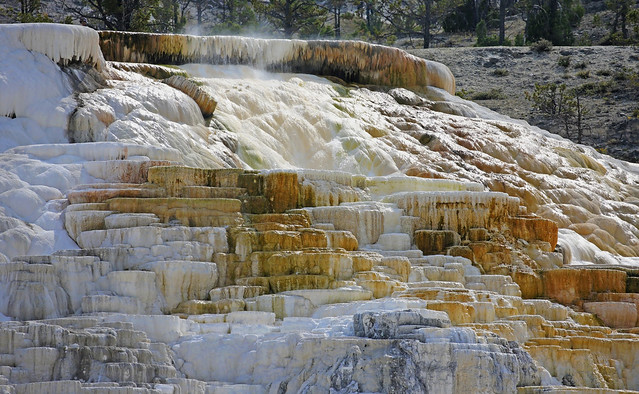 Minerva Terrace at Mammoth Hot Springs