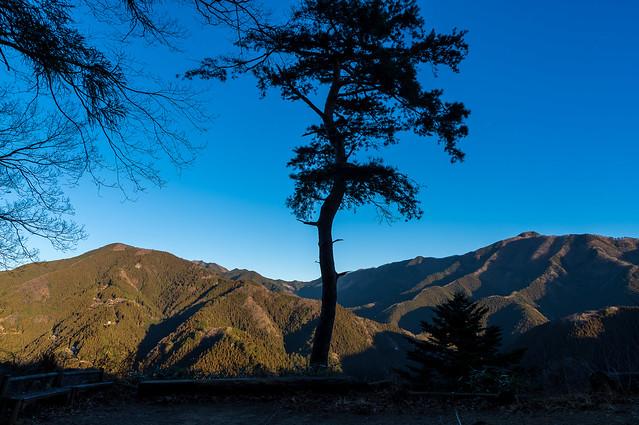 御前山と大岳山@峠の茶屋