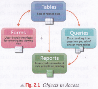 cbse-notes-for-class-8-computer-in-action-introduction-to-microsoft-access-2013-1