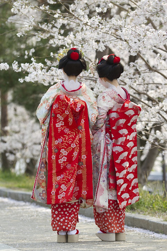 Traveling to Japan? Read the Japan Traveler's Companion