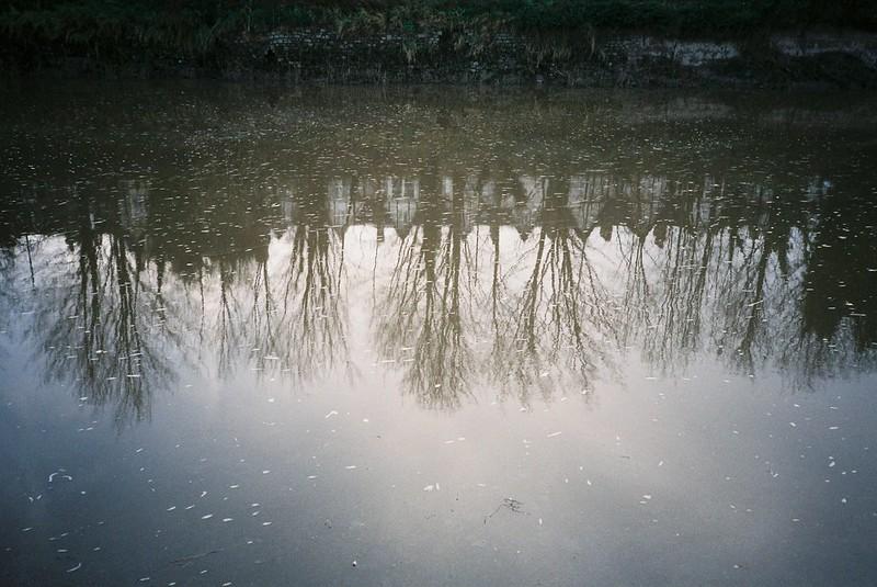 Avon reflections