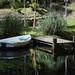 Ham Cottage Open Garden - Highbrook, Sussex