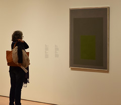 Viewing an Albers...