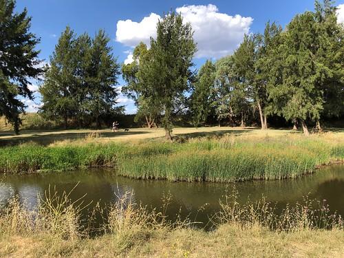 Macquarie River, Bathurst.