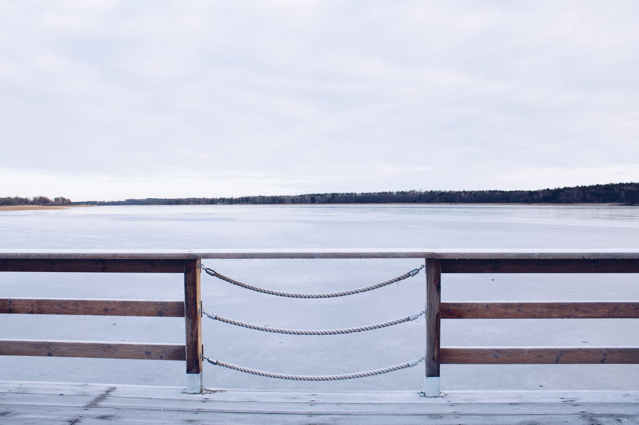 Frostig vinter - reaktionista.se