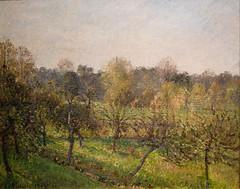 Soleil couchant à Eragny (C Pissarro - PDRS 1471)