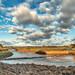 River Clyst at Topsham, Devon