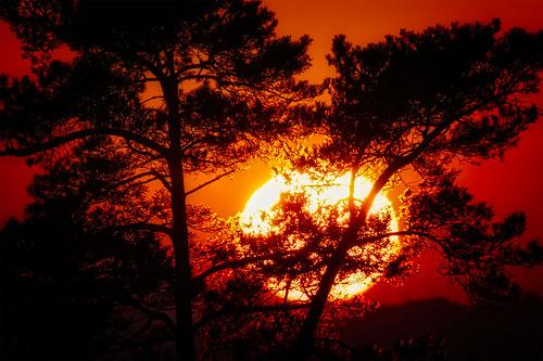 Serie Sonne und Mond