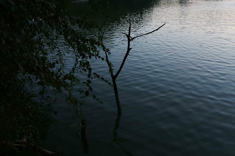 City Walk - Twilight Around the Water, Hauz Khas Lake
