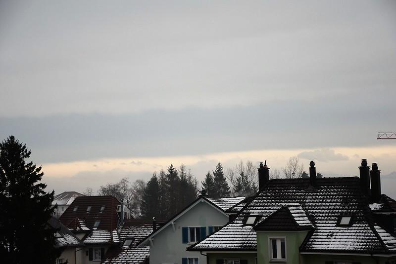 Road to Langendorf 11.12 (11)
