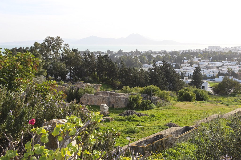 Karthagon retki