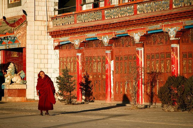 An elderly monk in Kandze Monastery, Garzê 甘孜 カンゼゴンパの年配の僧