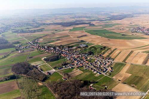Buhl (0.43 km North) - IMG_097439
