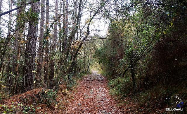 Camino Real de las Enderrozas y cascada de Irús (12)