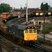 25906 Ditton-Arpley trip, Arpley Junction 20.06.1986 -